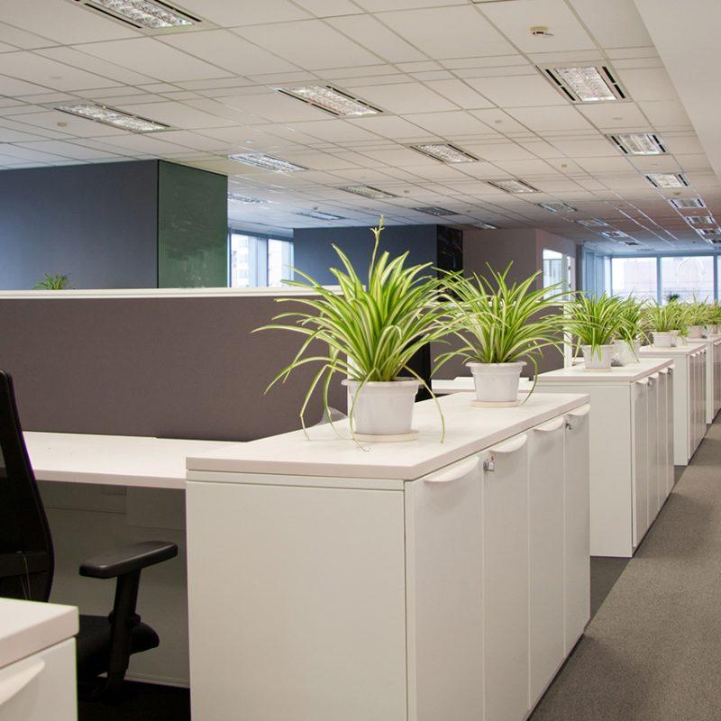 """Five Modern Day Office Amenities that Attract """"Millennials"""""""